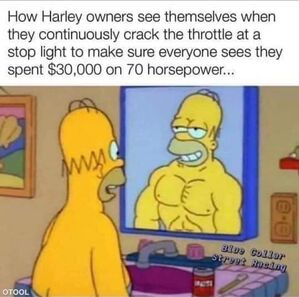 Name:  homer.jpeg